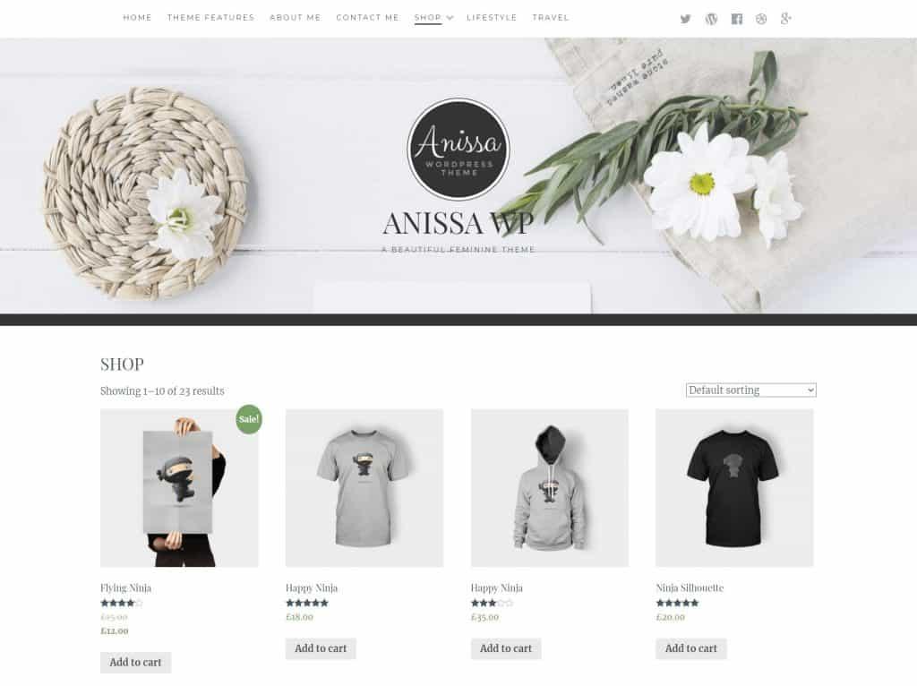 Anissa WordPress Theme Review